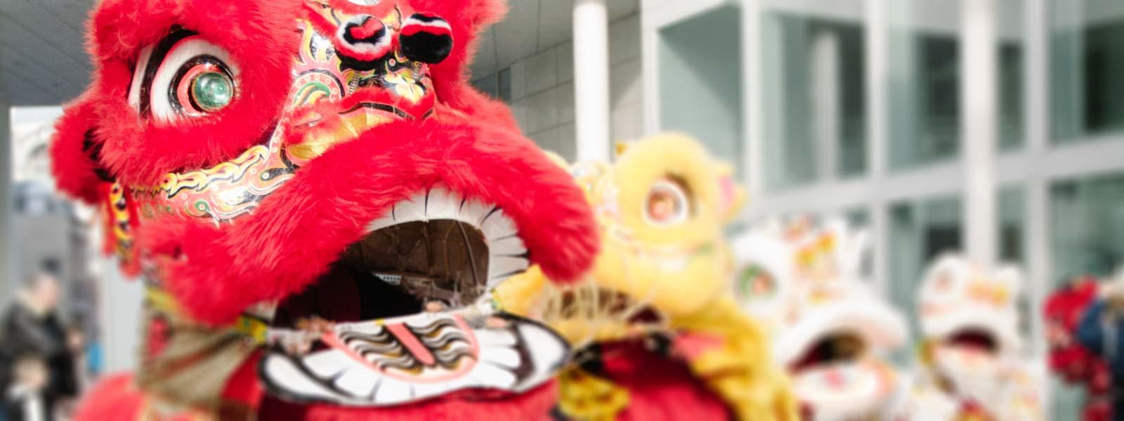 chinese leeuw
