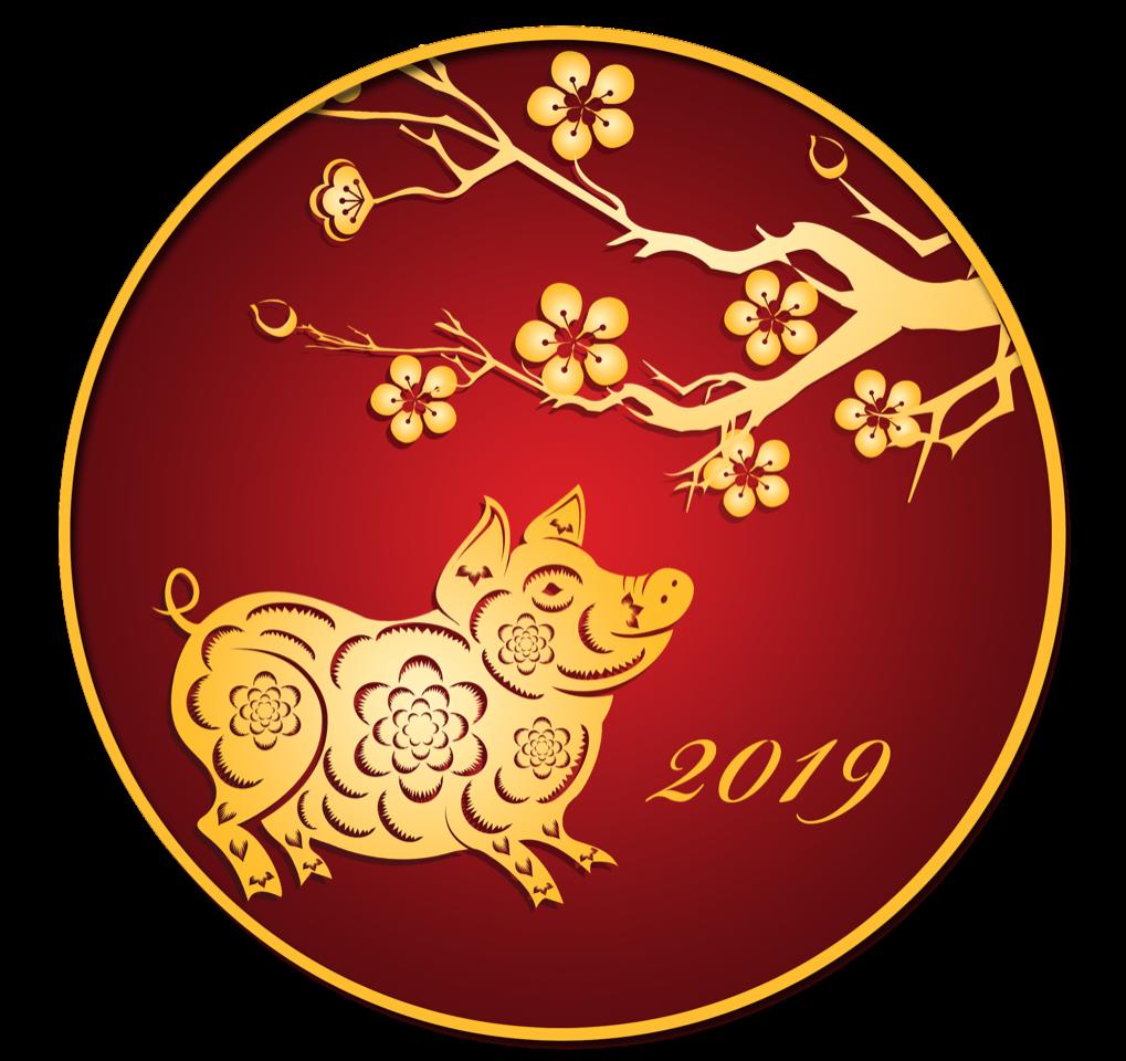 Chinese New Year – Stichting Chinese Culturele Evenementen